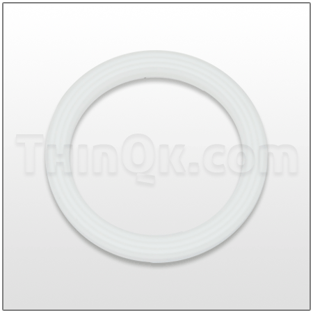 Seal (T720.038.600) PTFE