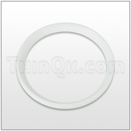 Seal (T720.051.600) PTFE
