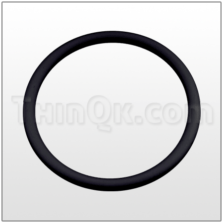 O-Ring (TV258ND) EPDM